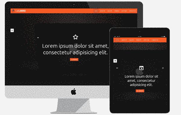 قالب شرکت گرافیکی لیدی برد تکنولوزی پارالاکس html