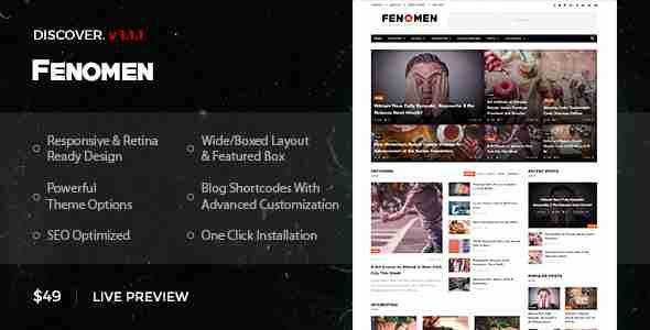 قالب مجله وبلاگ نویسی وردپرس RTL فینومن