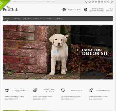 قالب سایت تجاری وبلاگ نویسی حیوانات html
